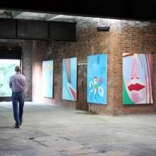 Cesis art festival (1)